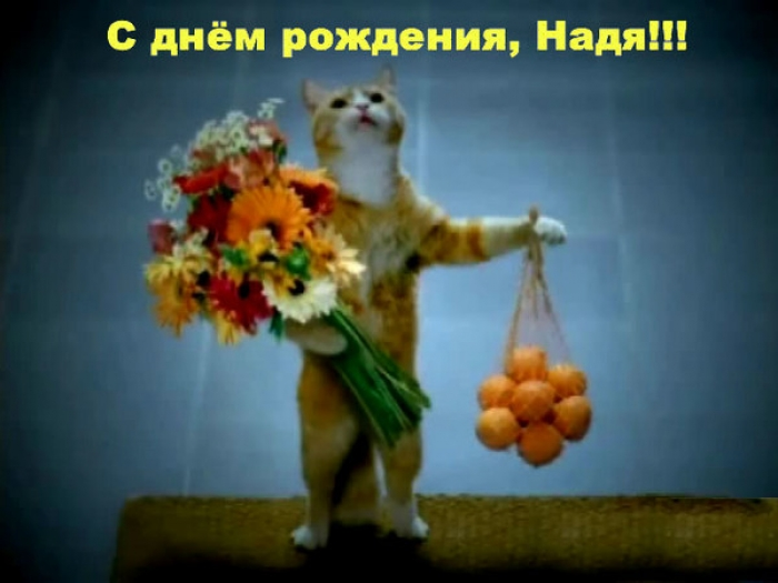 Поздравления с днем рождения 1775 поздравлений